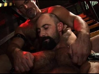 Hairy Hunx | hairy guy   oral