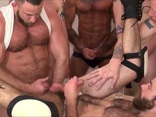 Gay orgy   bears best  gays tube  orgy tube