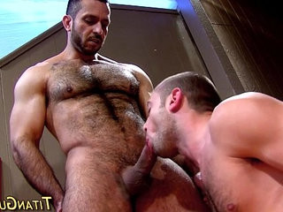 Hung bear gets rod sucked | bears best   getting   hung hq   studs   sucking